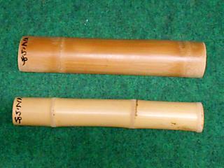 DSCN0125